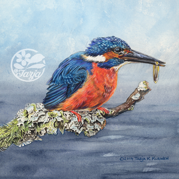 KingFisher_Apr5_etsy