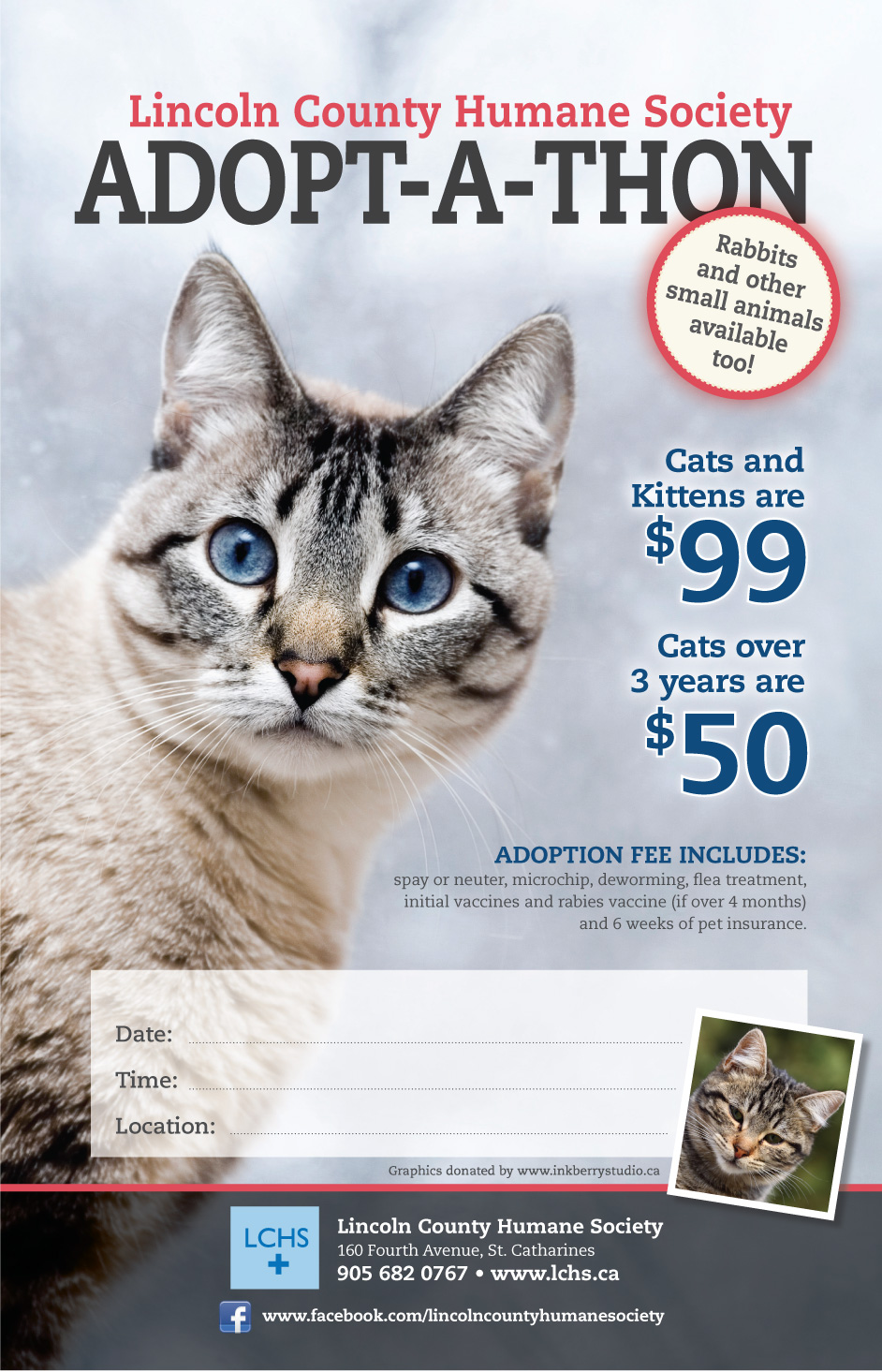 Cat Adoption Poster