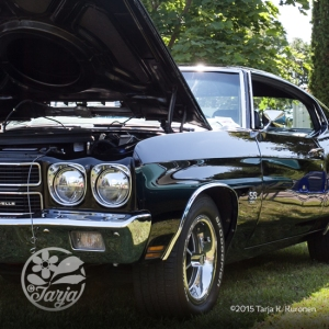CarShow_CountryGardens_Aug232_fb_10