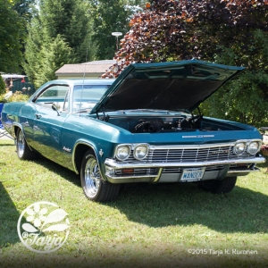CarShow_CountryGardens_Aug232_fb_11