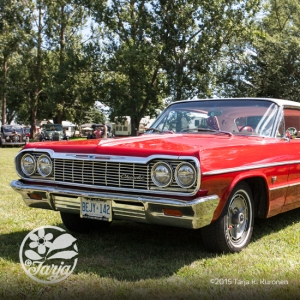 CarShow_CountryGardens_Aug232_fb_28
