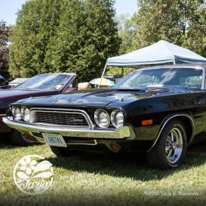 CarShow_CountryGardens_Aug232_fb_29
