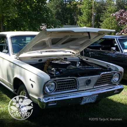 CarShow_CountryGardens_Aug232_fb_8