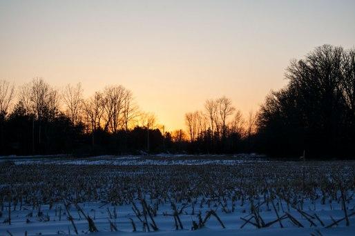 IMG_9976-Sunset-web